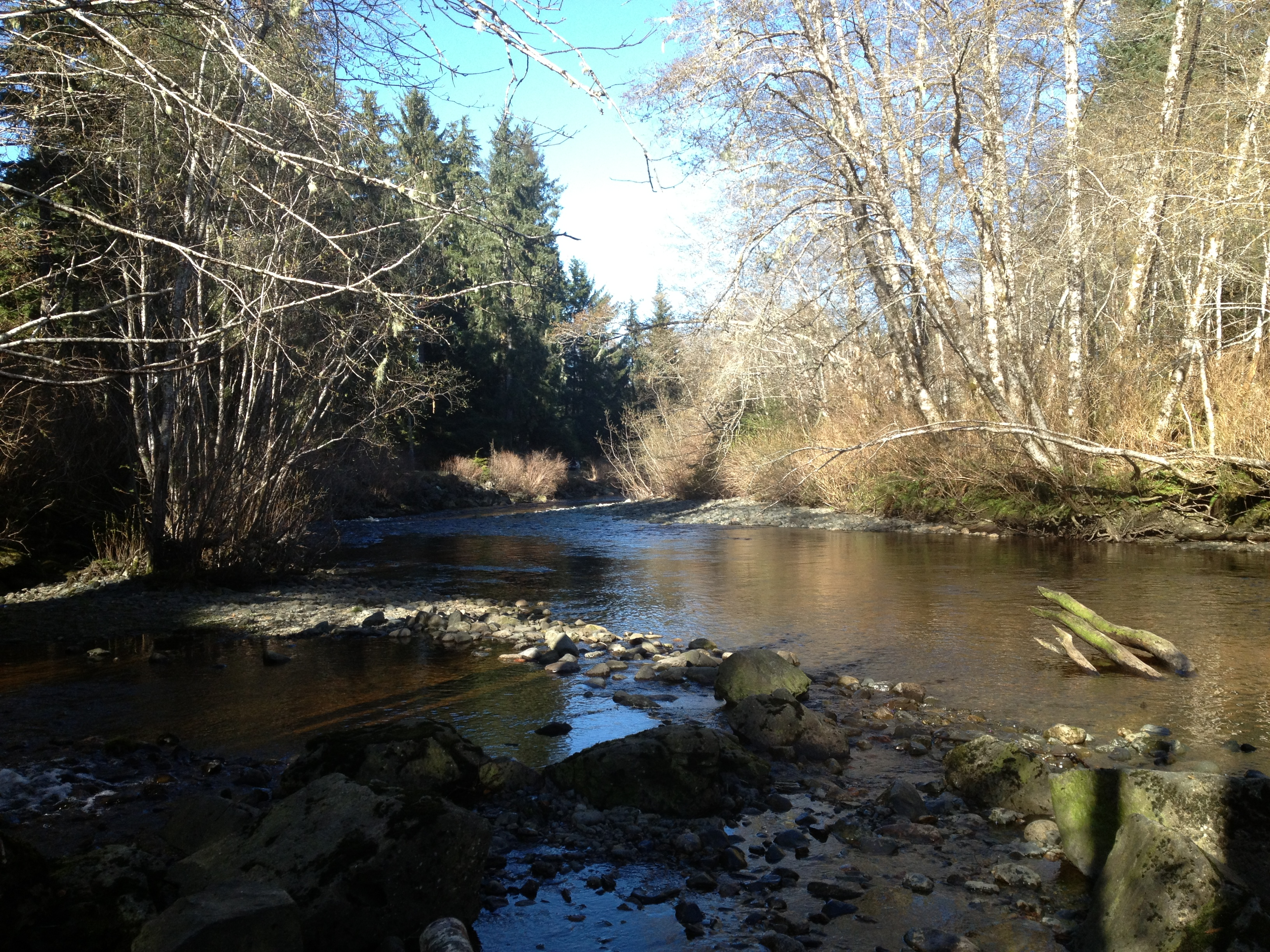 Property For Sale Port Hardy